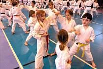 Karate se věnují nejen dospělí, ale také děti, ze kterých by mohli vyrůst špičkoví sportovci.