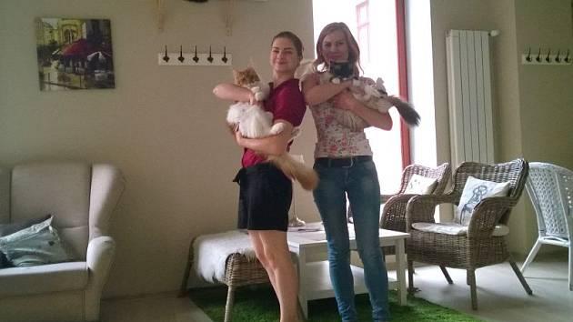 Tereza Kučková (vlevo) a Vendula Holušová spojily svou lásku ke kočkám s přáním otevřít si vlastní kavárnu.