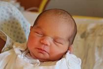 Veronika Stonišová se narodila 13. ledna 2020, vážila 3,75 kilogramu a měřila 51 centimetrů. Rodiče Veronika a Miroslav z Opavy jí přejí zdraví a štěstí. Na Verunku už doma čeká čtyřletá sestřička Viktorka.