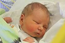 Sebastián Pospěch se narodil 22. ledna 2019, vážil 3,40 kilogramu a měřil 49 centimetrů. Maminka Zdeňka z Opavy přeje svému prvorozenému synovi do života zdraví a štěstí.
