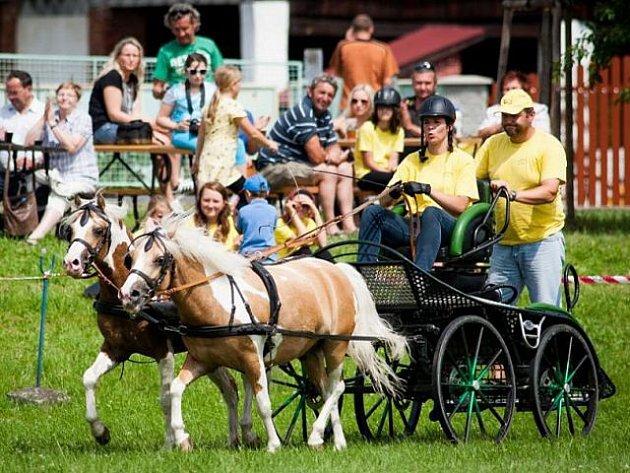 Návštěvníci se mohou těšit třeba na vozatajské závody.