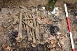 Kosti německých vojáků z druhé světové války nalezené v bolatickém lese v minulých letech.
