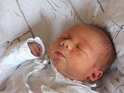 Vojtěch Dušek se narodil 31. října, vážil 3,50 kilogramů a měřil 50 centimetrů. Rodiče Nikola a Libor z Opavy mu do života přejí zdraví a aby poznal jen samé dobré lidi. Na Vojtíška už doma čekají sestřička Terezka a bráška Péťa.