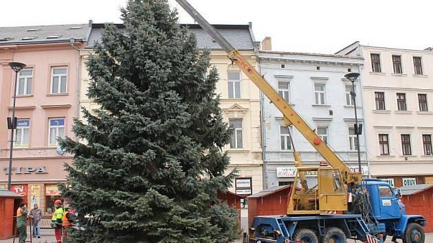 V pondělí po desáté hodině ranní začali zaměstnanci technických služeb vztyčovat na Dolním náměstí v Opavě vánoční strom.