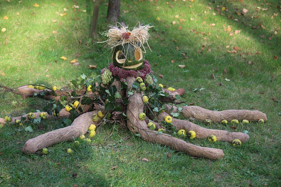 Vyřež/š si svou dýni, Arboretum Nový Dvůr