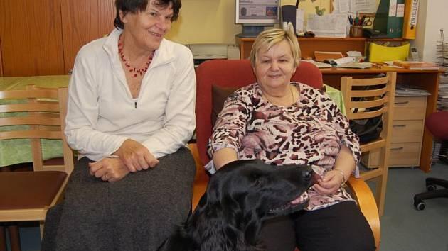 Ludmila Vítková (vlevo) s Alfou a klientkou charitního stacionáře.