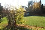 Podzim v arboretu. Ilustrační foto.