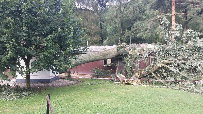 Na chatu plnou dětí spadl ve čtvrtek večer v Mokřinkách strom. Podle dostupných informací nebyl nikdo zraněn, záchranáři nevyjížděli.