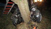 Auto narazilo do vzrostlého stromu, řidič nepřežil.