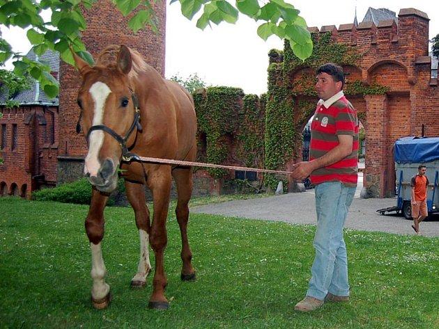 Filmaři využili k natáčení také koně.