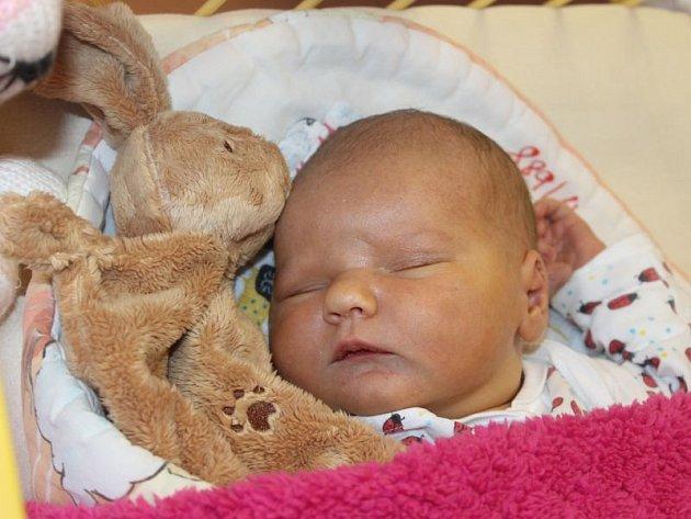 Alžběta Šajtarová se narodila 18. října 2016, vážila 4,29 kilogramů a měřila 52 centimetrů. Rodiče Eva a David z Opavy jí do života přejí hlavně zdraví. Na Alžbětku se už doma těší brácha David.