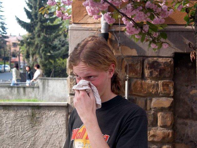Alergici dostávají zabrat. Letošní suché jaro pro ně znamená obrovskou zátěž.