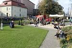 Mezinárodní den archeologie v opavském muzeu.