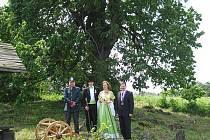 U Zlaté lípy se nedávno uskutečnila také svatba. Svatebčané věří, že jim lípa opředená pověstmi, přinese štěstí.