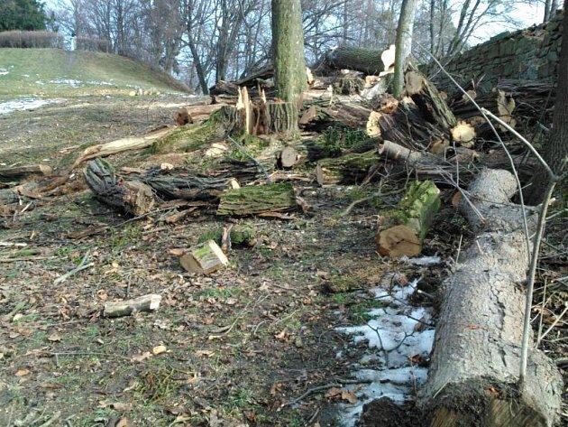 V parku hradeckého zámku se v současnosti ve velkém kácí stromy. Většina z nich byla pro kolemjdoucí nebezpečná.