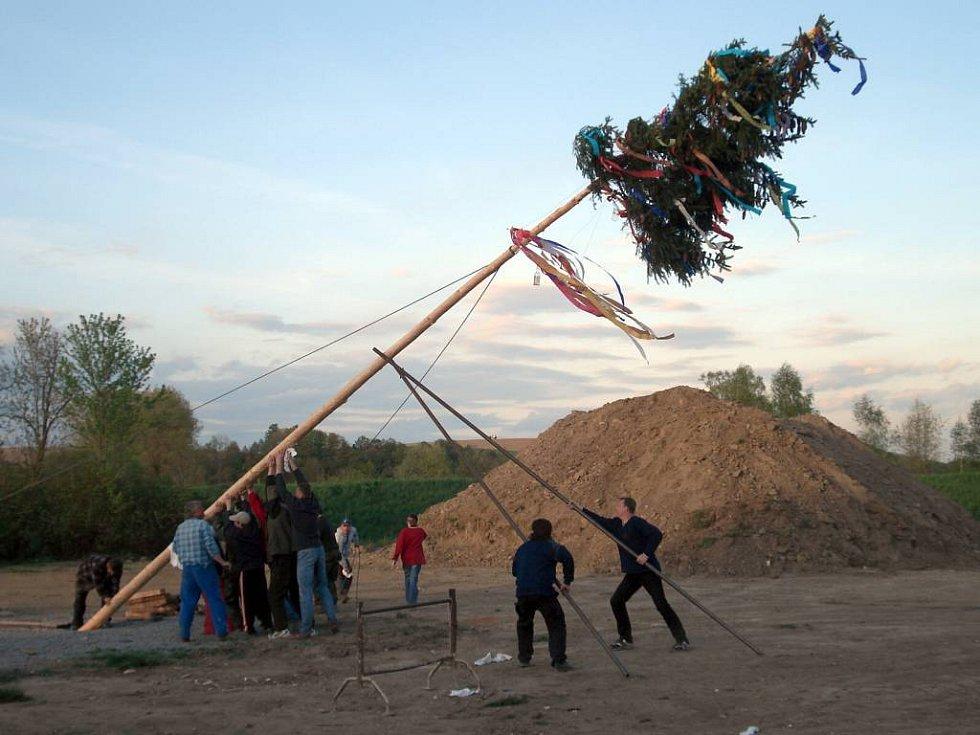 Po sedmi letech obnovili Jilešovičtí tradici stavění máje.