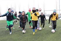 Hlučínští fotbalisté se dočkají nové umělé trávy.