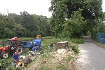 Kácení stromů začalo uplynulé pondělí a dokončeno by mělo být tento pátek.
