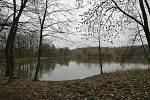 Stěbořické rybníky.