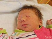 Miriam Dihlová se narodila 18. prosince, vážila 2,95 kilogramů a měřila 49 centimetrů. Rodiče Ivana a Miroslav z Jilešovic jí do života přejí štěstí a zdraví. Na Miriam už doma čeká sestřička Viktorka.