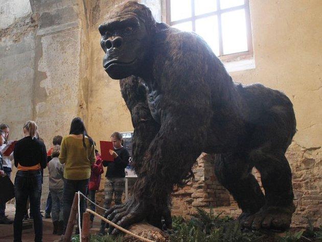 Výstava Giganti doby ledové rozhodně má na to, aby návštěvníky zaujala. Zvlášť v podmanivém prostředí kostela svatého Václava.