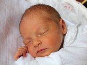 Monika Vrbická se narodila 13. ledna, vážila 3,12 kilogramu a měřila 48 centimetrů. Rodiče Hana a Ondřej z Otic jí do života přejí zdraví, štěstí, spokojenost a dobré lidi kolem sebe.