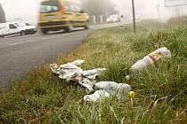 Odpadky se povalují například u silnice při vjezdu do Komárova směrem od Opavy.