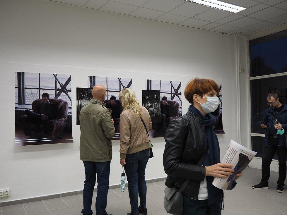 Výstava v opavské Slezance.