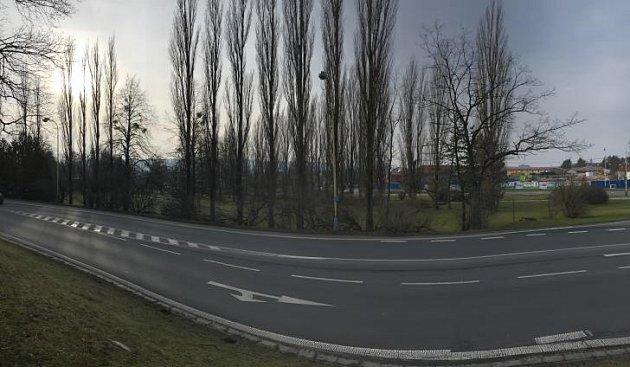 Stromořadí v Hlučíně by mělo být obnoveno v průběhu letošního roku.