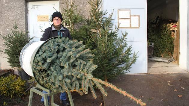 Prodejce vánočních stromků David Slavata před starou kotelnou v ulici Boženy Němcové v Opavě.
