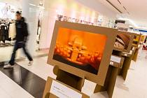 Nejlepší fotografii výstavy vyberou diváci prostředním hlasovacích kuponů.