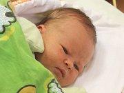 Beáta Pröschlová se narodila 25. září, vážila 3,84 kilogramů a měřila 50 centimetrů. Rodiče Hana a Petr z Opavy jí přejí zdraví, štěstí, lásku a úspěšný a spokojený život. Na Beátku se už doma těší sestra Julinka.