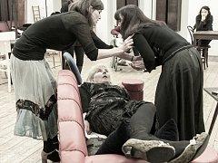Slezské divadlo uvede premiéru komediální detektivky francouzského autora Roberta Thomase s názvem Osm žen.
