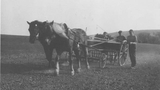 ŠTEMPLOVEC byl zemědělskou obcí. Snímek zachycuje setí na poli Říčných v roce 1962.