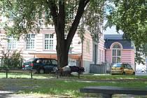 Nejenže v parku v Ochranově ulici večer nesvítí světla, ale přespávají zde také bezdomovci. A to v těsné blízkosti základní školy.