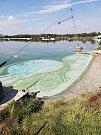 Rozbory ukázaly, že skvrna na Hlučínském jezeře nevznikla kvůli chemikáliím.