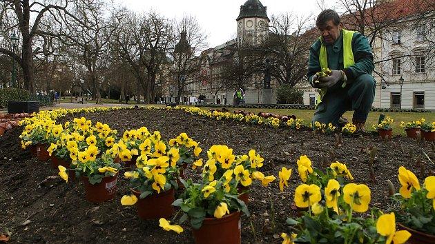 Jedním zdůvodů, proč ke zřízení pozice zahradníka dojde, je podle radnice stále se rozšiřující počet zelených ploch.