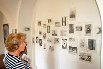 Současné výstavy potrvají v Domě umění už jen do této neděle.