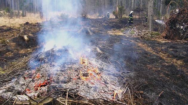 Jeden z březnových lesních požárů na Opavsku.