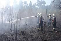 Nedbalost neznámých lidí, kteří na okraji lesa mezi Pustou Polomí a Budišovicemi založili oheň, vedla k požáru, jež nakonec zasáhl šest hektarů stromového a jiného lesního porostu.