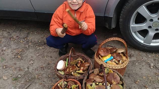 Na houby vyráží Lucie Plocková s pomocníky. Jedním z nich je i její syn Mareček.