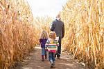 Kukuřičný labyrint. Ilustrační foto.