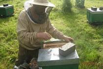 Pavel Košec založil Včelí farmu v roce 2006.