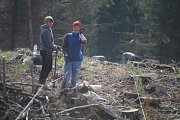 Chřadnutí lesů a nadměrná těžba kůrovcem napadených stromů je v Moravskoslezském kraji velkým problémem.