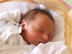 Veronika Dehnerová se narodila 26. června, vážila 2,08 kilogramů a měřila 44 centimetrů. Rodiče Pavlína a Zdeněk z Radkova jí do života přejí zdraví a štěstí. Na Verunku se doma těší sestřičky Marie a Julinka.