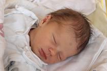 Dominika Dudoková se narodila 7. listopadu, vážila 3,32 kilogramů a měřila 50 centimetrů. Rodiče Romana a Lukáš z Jezdkovic jí do života přejí zdraví a štěstí. Na Dominiku už doma čeká sestřička Isabel.