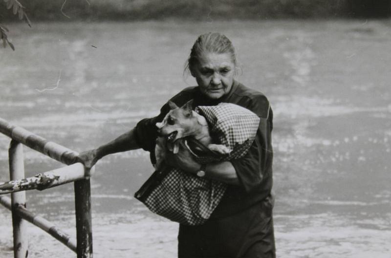 Fotografie, jež se stala symbolem povodní. Na snímku je zachycena důchodkyně Anna Vaňhárková se svým psem v náručí, jak během pondělí 7. července 1997 opouští záplavovou zónu. Snímek byl pořízen jen několik hodin před její smrtí.