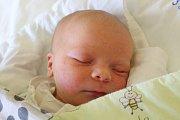 """Julie Husáková se narodila 16. května, vážila 3,51 centimetrů a měřila 50 centimetrů. """"Je to naše první miminko. Do života mu přejeme štěstíčko a zdravíčko,"""" řekli rodiče Hana Venerová a Karel Husák z Bruntálu."""