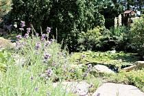 Jezírko na zahradě paní Špičkové bylo vodním prvkem blízkým přírodě, jaký porota hledala.