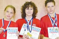 Bruntálští mladí plavci pokračovali v závodech a dařilo se zejména Romanu Procházkovi.